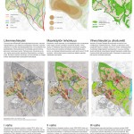 Trafic- & green network, density zones and phasing.